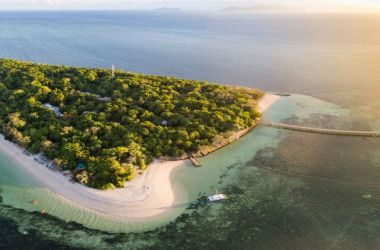 Exciting projects for Green Island