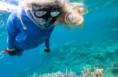 Hayley's leading role in Cairns & Great Barrier Reef brand launch
