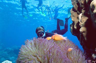 Reef Biosearch turns 35