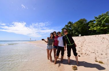 Chinese visitors given insight into Green Island