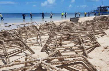 Stars, clips and cable ties... Coral Reef resilience project installed at Green Island