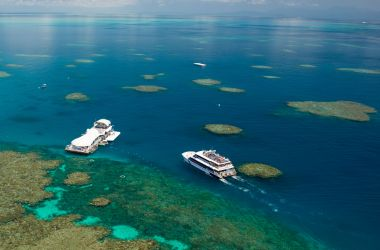 Best job in the world contender! Living and working on the Great Barrier Reef