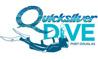 Quicksilver Dive